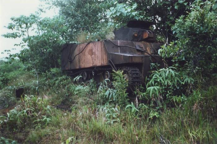 tanks_taken_nature_11