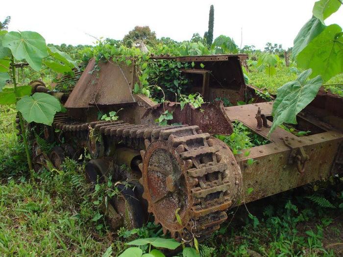 tanks_taken_nature_13