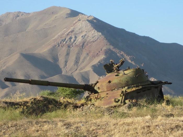 tanks_taken_nature_19