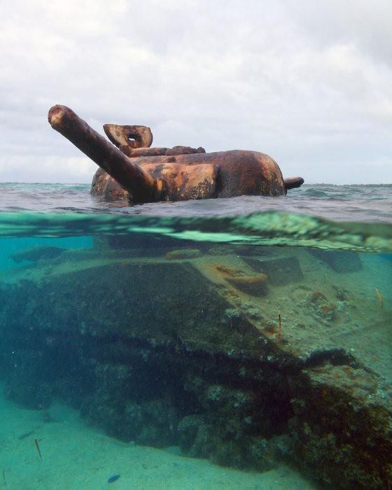tanks_taken_nature_20