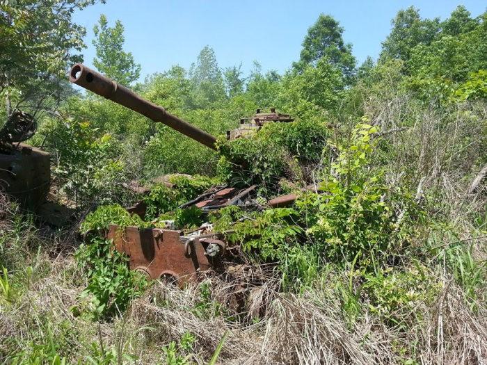 tanks_taken_nature_22