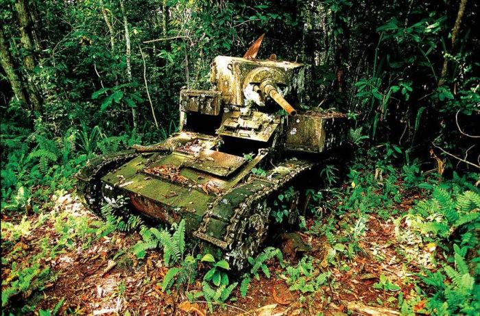 tanks_taken_nature_25