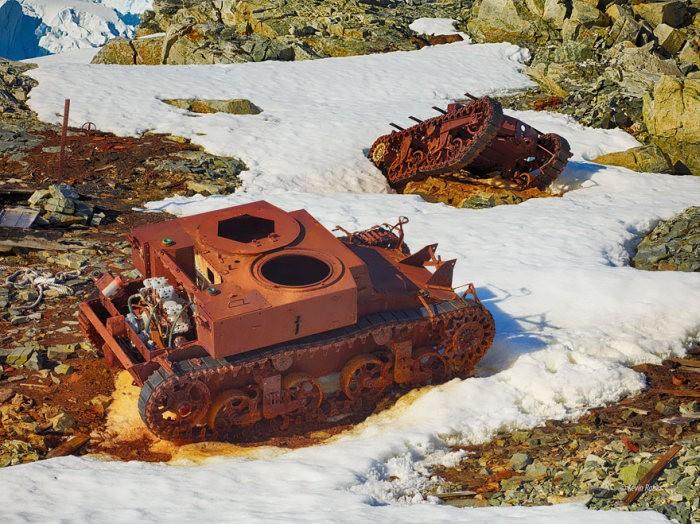 tanks_taken_nature_27