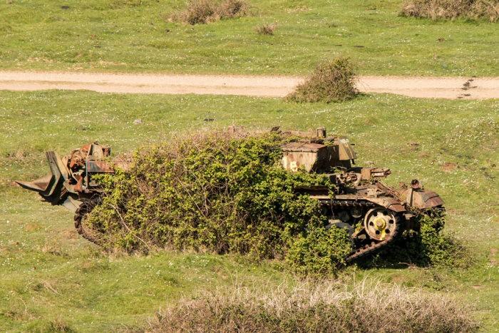 tanks_taken_nature_29