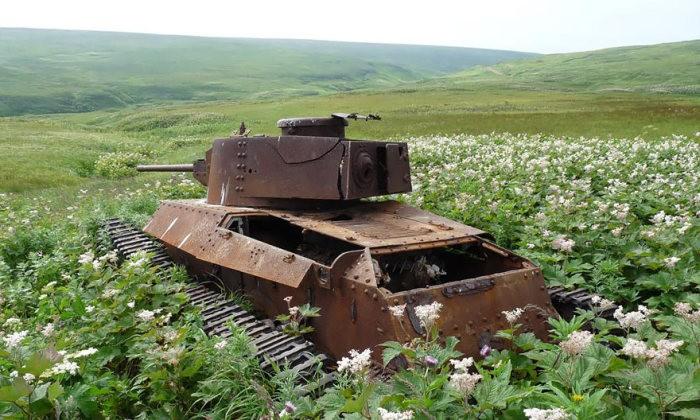 tanks_taken_nature_33