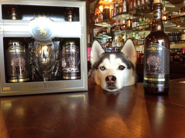these-animals-know-how-to-party-28-photos-12