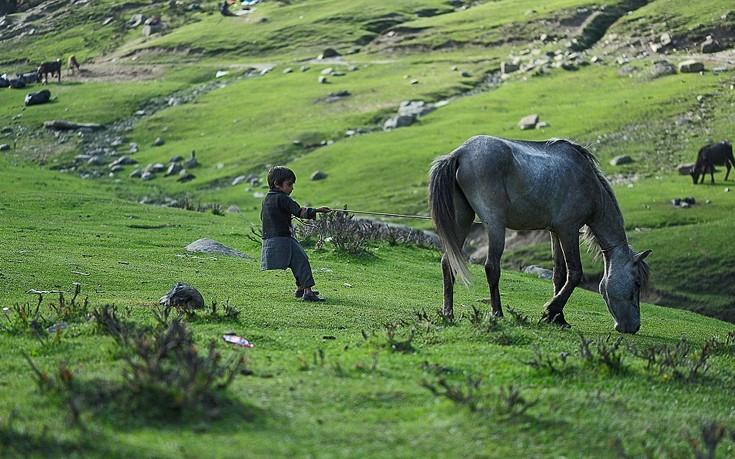 Kashmir7