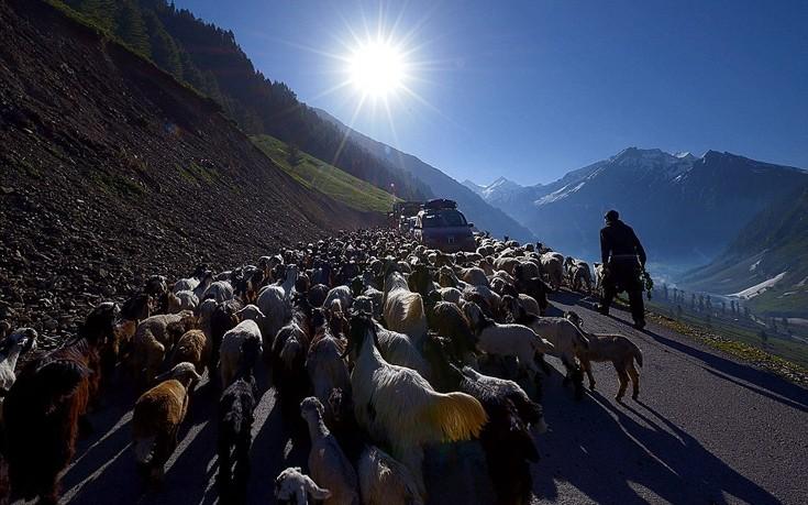 Kashmir8