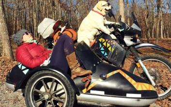 Η εκπληκτική «Επιχείρηση Moto Dog» που έγινε εμπειρία ζωής