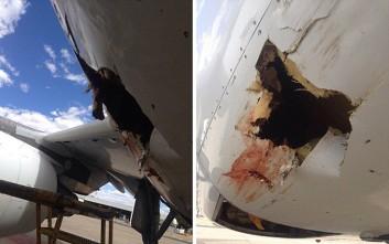 Όταν ένα πουλί συγκρούεται με ένα αεροπλάνο