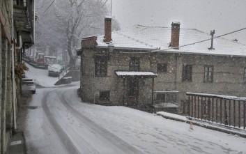 Έντονη χιονόπτωση στο Μέτσοβο