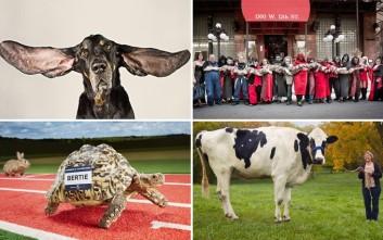 Δέκα παράξενα ρεκόρ ζώων