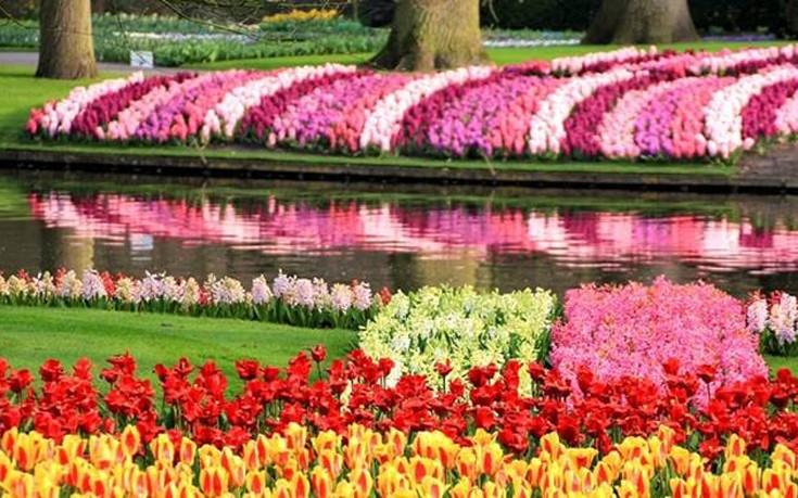 Ο εκπληκτικός λουλουδόκηπος της Ολλανδίας