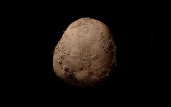 Η πατάτα που πωλήθηκε για 1 εκατομμύριο ευρώ!