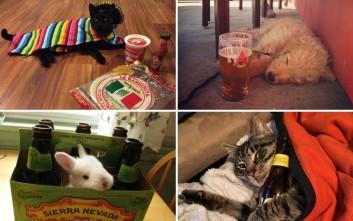 Αυτά είναι party animals