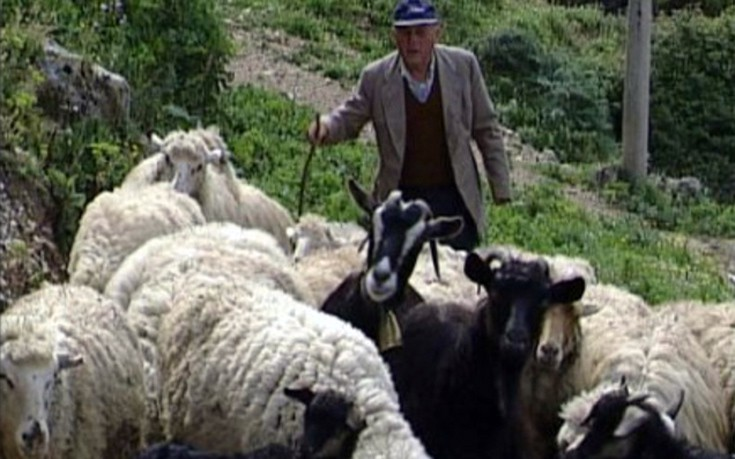 Έκτακτη στήριξη στους κτηνοτρόφους των νησιών του Αιγαίου