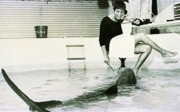 Η ιστορία της γυναίκας που αμάρτησε με ένα δελφίνι