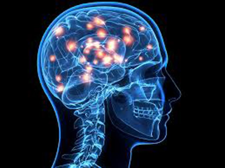 Έξι αλήθειες για τον εγκέφαλο – Newsbeast