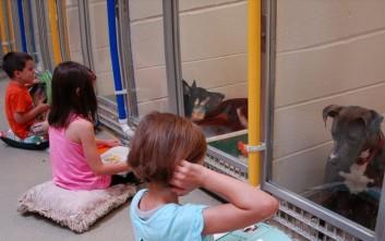 Τι συμβαίνει όταν παιδιά διαβάζουν σε τρομοκρατημένα σκυλιά