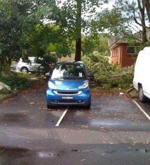 parking-fails-016-04142015