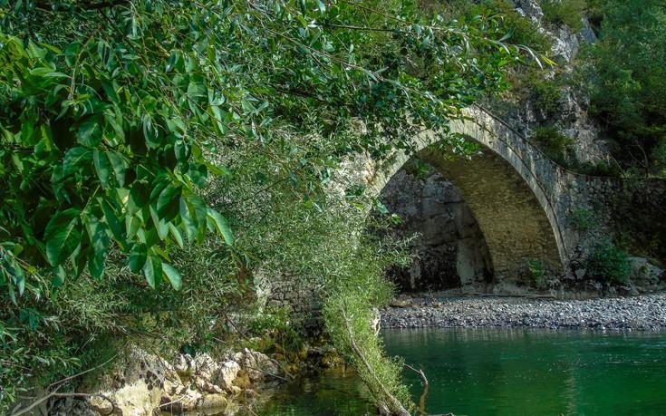Άγρια ομορφιά στο Γεφύρι της Πορτίτσας