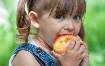 Ξεκινά η παροχή γευμάτων σε 9 δημοτικά σχολεία