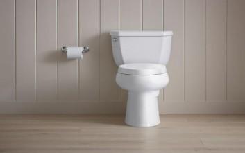 Γιαούρτι για τον... καθαρισμό της τουαλέτας