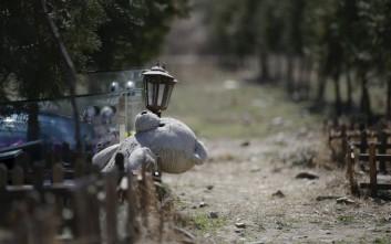 Το νεκροταφείο κατοικίδιων ζώων της Κίνας