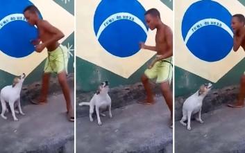Έτσι ξεχωρίζει ο σκύλος από τη Βραζιλία