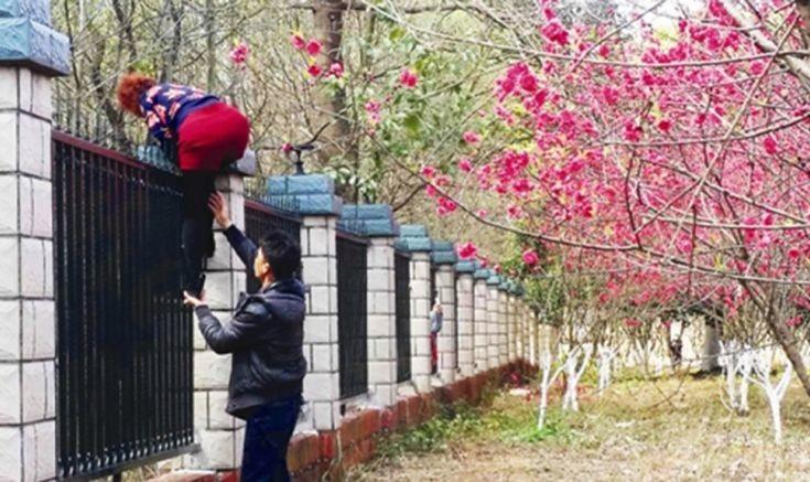 Ο απίθανος λόγος για τον οποίο περαστικοί πηδούν μέσα σε φυλακή στην Κίνα