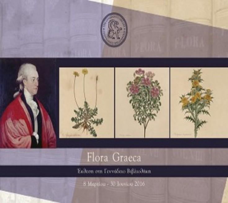 flora01