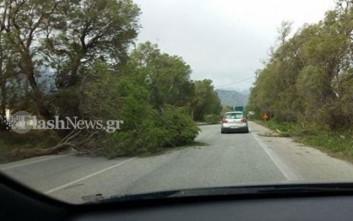 Θυελλώδεις άνεμοι στα Χανιά μπλοκάρουν τις μεταφορές