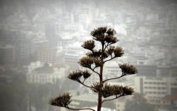 Η σκόνη από τη Σαχάρα θα μειωθεί τις επόμενες δεκαετίες