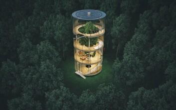 Γυάλινο σπίτι χτισμένο γύρω από δέντρο