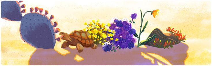 Google-2016-04-22-Sophie_Diao-E4-Desert-Turtle-unnamed