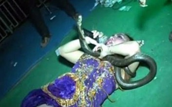 Κόμπρα δάγκωσε τραγουδίστρια πάνω στη σκηνή και τη σκότωσε