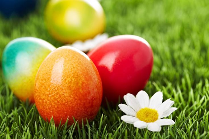 Αποτέλεσμα εικόνας για κόκκινα αυγά