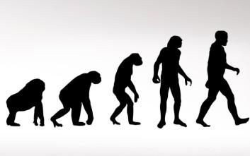 Η νέα θεωρία για τον λόγο που οι άνθρωποι... κατέβηκαν από τα δένδρα
