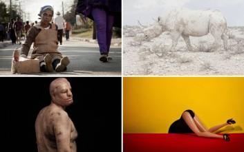 Οι βραβευμένες φωτογραφίες του διαγωνισμού της Sony το 2016