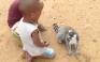 Ο... απαιτητικός λεμούριος που τρελαίνει το YouTube