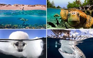 Η μαγεία των over-under water φωτογραφιών