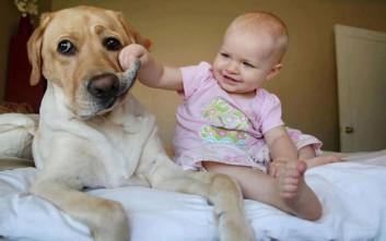 Τα κατοικίδια προστατεύουν τα παιδιά από τις αλλεργίες