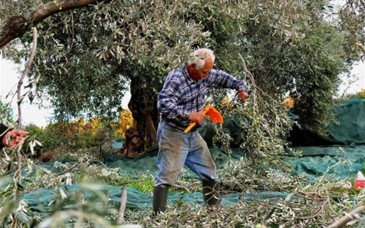 Τι εισφορές θα πληρώνουν οι αγρότες από το 2017