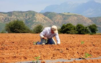 Αυξάνονται τα επιτρεπόμενα όρια της εθνικής στήριξης των γεωργών