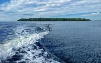 Νησί της Φλόριντα πωλείται 15 εκατ. ευρώ φθηνότερα από την αρχική τιμή