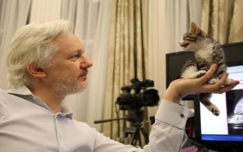 Ο Τζούλιαν Ασάνζ και το γατάκι του