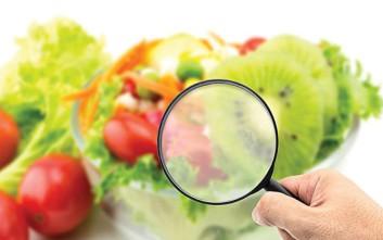 Η εφαρμογή Συστημάτων Διαχείρισης Ποιότητας και HACCP στην αγορά της μαζικής εστίασης