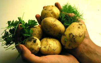 Πώς ξεφλουδίζονται πιο εύκολα οι βραστές πατάτες