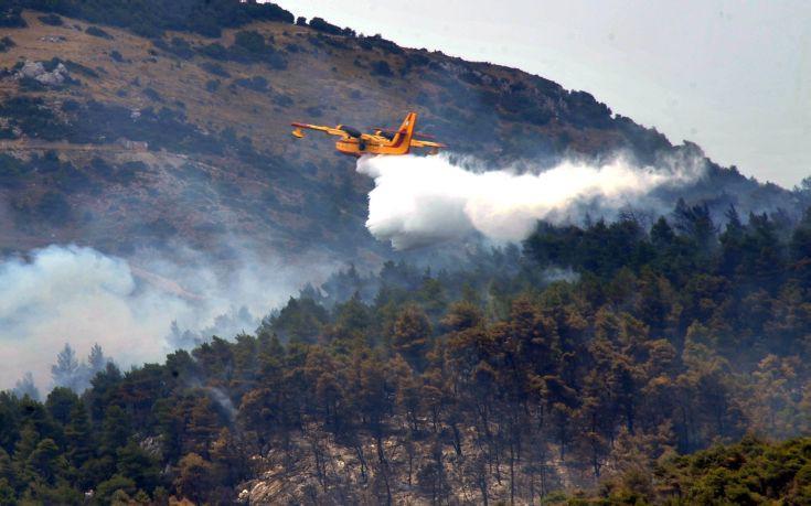 Πυρκαγιά σε δασική έκταση στο Εξωχώρι Μεσσηνίας