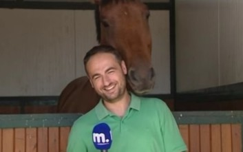 Άλογο ερωτεύτηκε έλληνα δημοσιογράφο